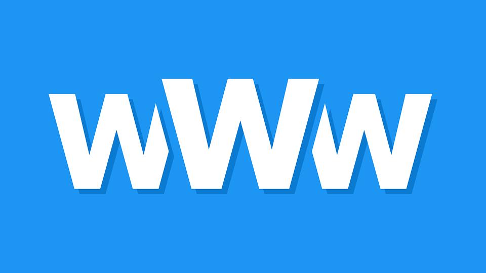 Logo word wild web sur fond bleu